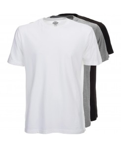 Dickies - MC TSht Pk 06210114 Assorted Colour (AS)