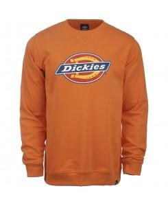 Dickies - Harrison 02200072 energy orange
